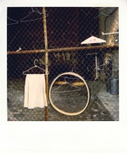 http://photo.mollywoodward.com/files/gimgs/th-54_25_mollywoodwardpolaroids011.jpg