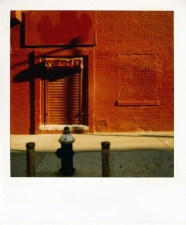 http://photo.mollywoodward.com/files/gimgs/th-54_25_mollywoodwardpolaroids013.jpg