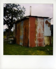 http://photo.mollywoodward.com/files/gimgs/th-54_25_mollywoodwardpolaroids102.jpg