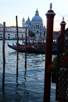 http://photo.mollywoodward.com/files/gimgs/th-91_Molly Woodward Photos Venice Italy_105.jpg